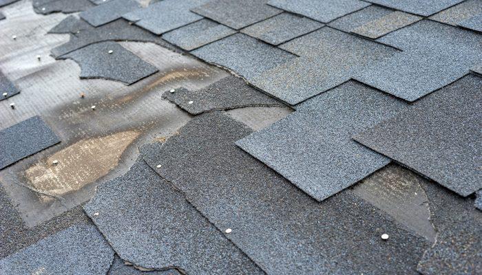 سقف های شینگل